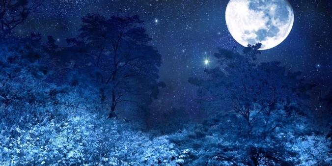 42 silencio Paisaje luna - copia